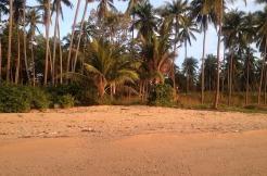 Beachland – Chaweng – Koh Samui